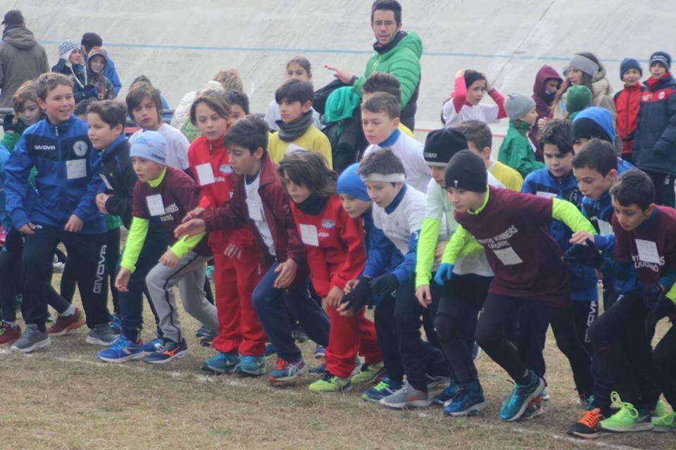 Domenica 22 gennaio a San Carlo Solvay vicino a San Vincenzo si sono svolte le prove di corsa campestre per le categorie promozionali. Ottima lacation […]
