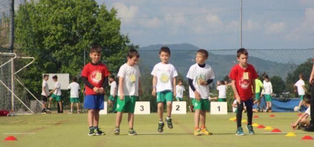 Sabato 04 maggio gare esordienti presso il nostro impianto a Collesalvetti e buon numero dei nostri piccoli atleti presenti alle gare. Le gare prevedevano per […]